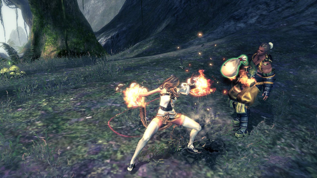 Blade and Soul fight