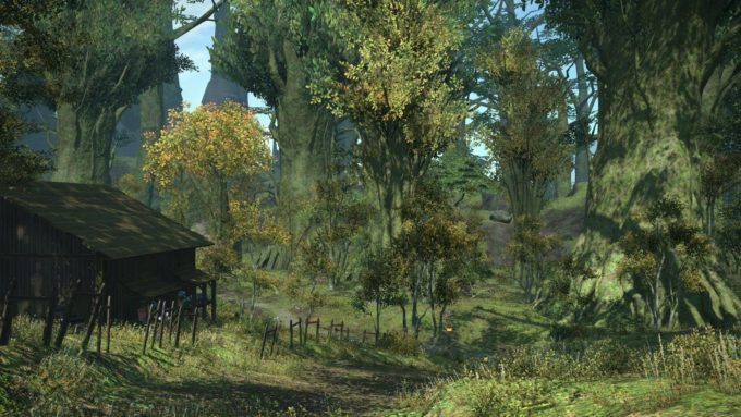 A forest zone in the Eastern MMORPG Final Fantasy XIV: A Realm Reborn