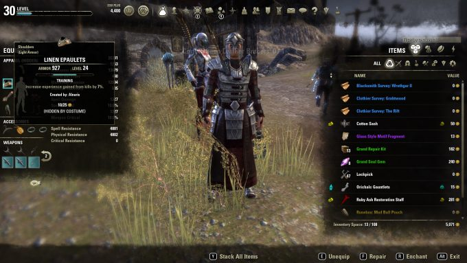 ESO Training Gear