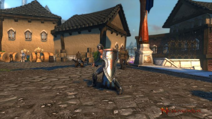 A paladin character in Neverwinter