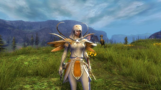 A character in Guild Wars 2, a game with a vocal but not always successful commitment to horizontal progression