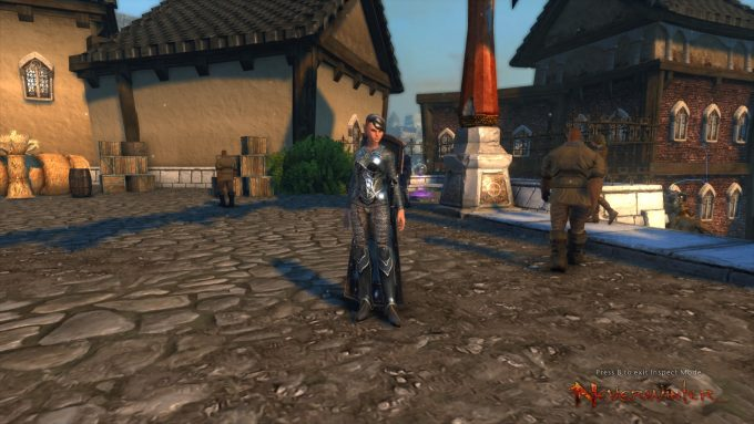 A paladin character in the Dungeons and Dragons MMORPG Neverwinter